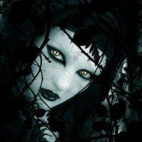 vampirofemmina7.jpg